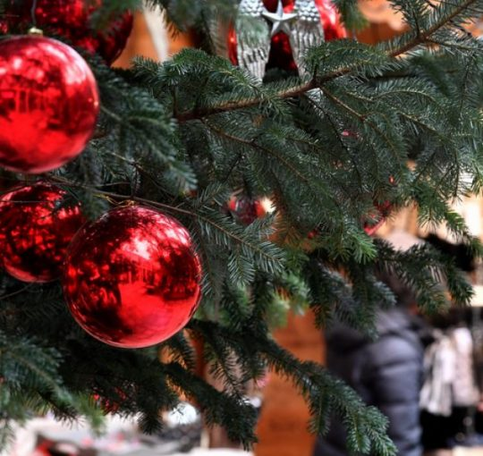 Χριστουγεννιατικο Προγραμμα Εκδηλωσεων